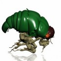 Bug 3D Model