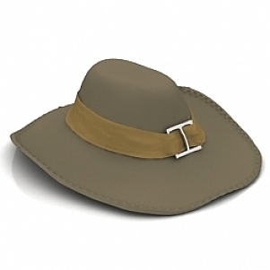Broad brim Hat 3D Model Free Download 3D Models ID3796 (3ds 458d049ed76e