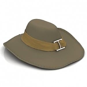 Broad brim Hat 3D Model Free Download 3D Models ID3796 (3ds 458d049ed76e