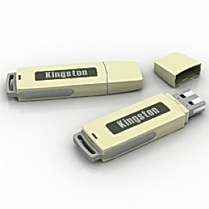 Kingston Flash Card 3D Model
