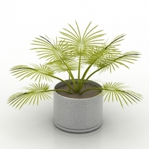 Plant 3D Model Free Download ID6420 (3ds, Gsm) - Open3dModel
