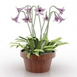 Flower 2 3D Model