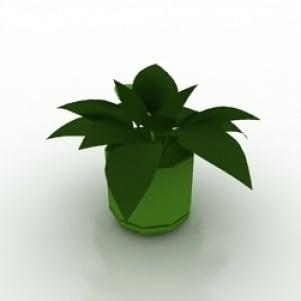 Flower 3 3D Model