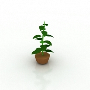 Flower 1 3D Model