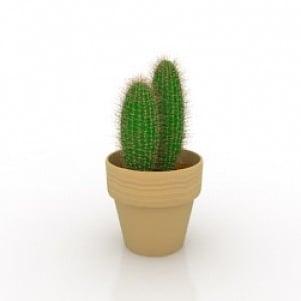 Plant 1 3D Model