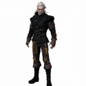 The Witcher Game Character