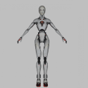Valet Robot