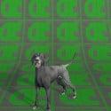 Dog Free Animal 3d Model