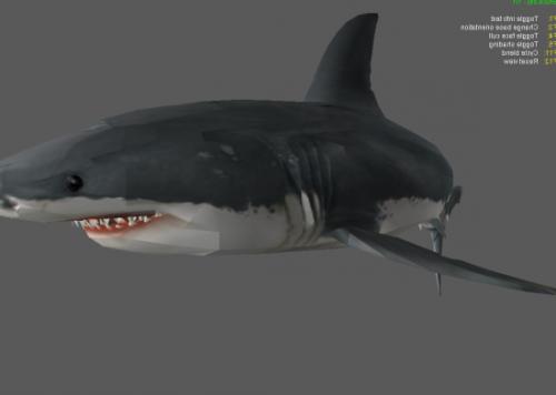 فكي القرش