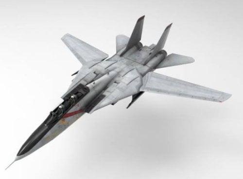 F14 Tomcat Aircraft