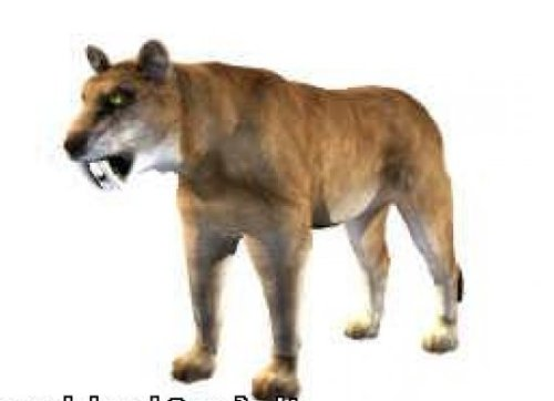 الحيوانات Sabertooth
