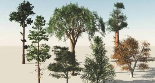 Colección 9 de árboles