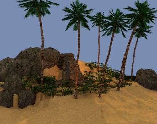 Exterior Tropical Island Scene