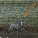 Dog Animal 3d Model