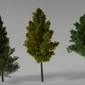 Gerçekçi ağaçlar sahne