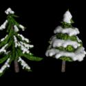 ثلجي أشجار الصنوبر