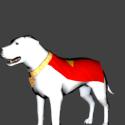 Krypto Superman Dog