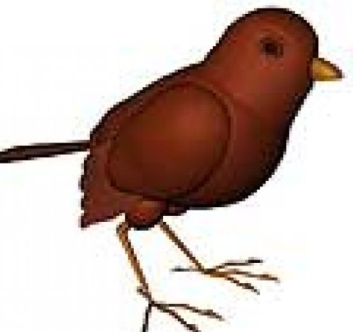Pájaro gorrión