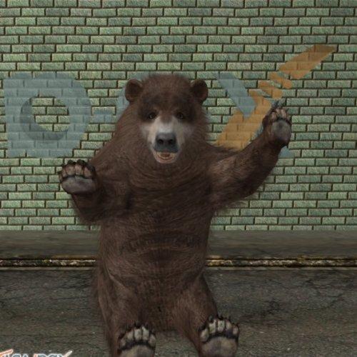 Amerikan karhu