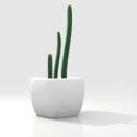 Cactus Pot Free 3d Model