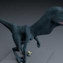 Veloraptor Dinosaur