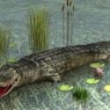 Animal Crocodile 3d Max Model