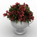 Beautiful Potted Flowers 3d Max Model Free