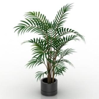 Simple Bonsai Plant 3d Max Model Free (3ds,Max) Free