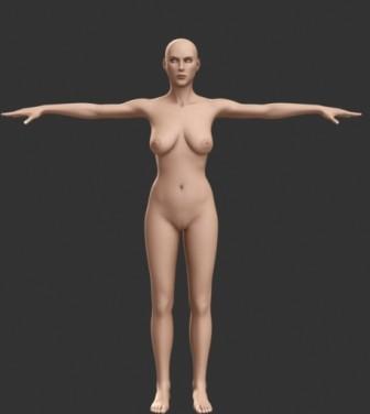 Human Body 3dsMax Model Free