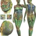Human Figures Role