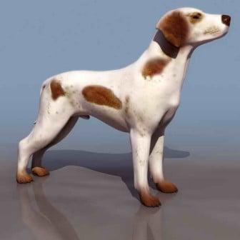 White Dog Animal 3dsMax Model