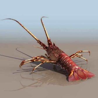 Lobster 3dsMax Model