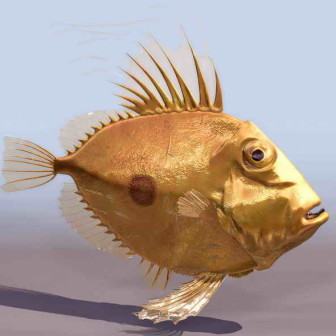 Yellow Sea Fish 3dsMax Model