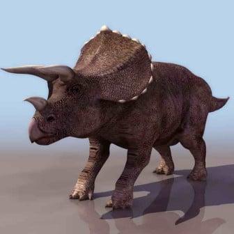 Rhino Animal 3dsMax Model