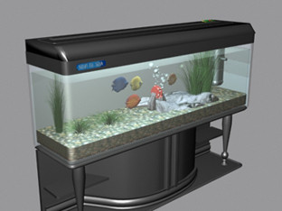 Fish Tank Aquarium 3dsMax Model