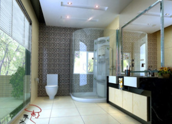 Bathroom Design Interior Scene