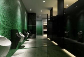 3d Max Model WC Interior