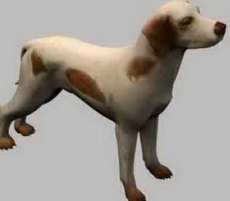 Dog Pet 3d Max Model Free