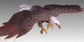 Animal Eagle Bird Hunting Goshawk Attacks 3d Max Model
