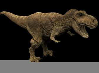 Animal 3d Max Model Tyrannosaurus