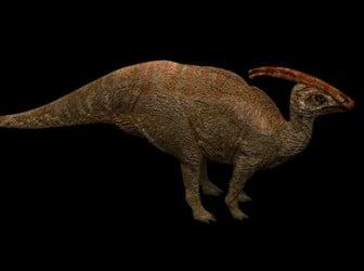 Parasaurolophus Dinosaur 3d Max Model Free