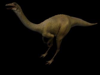 Longicollous Dinosaur 3ds Max Model Free