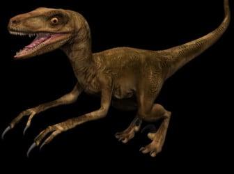 Animal Tyrannosaurus Dinosaur 3d Max Model