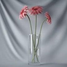 Kasvien Bonsai punaiset kukat
