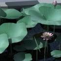 Lotus Leaf 3d Max Model Free