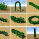 Zahradní Bush