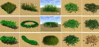 Garden Landscape 3dsmax 3d Max Model Free£º Grass