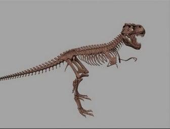 Dinosaurus luuranko