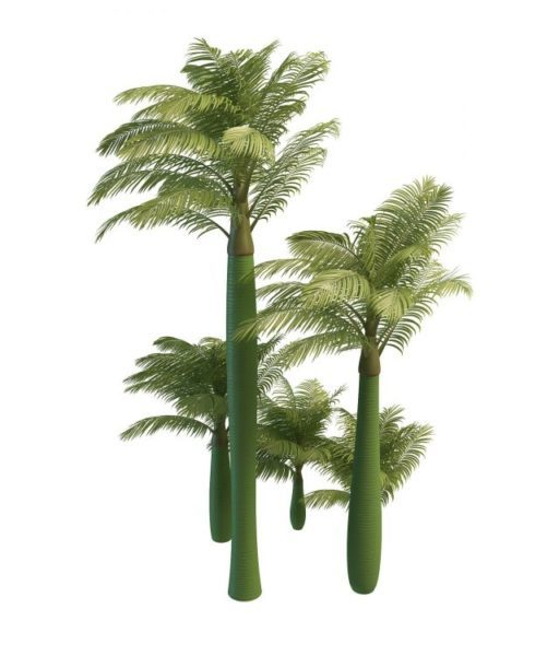 King Alexander Palm Trees
