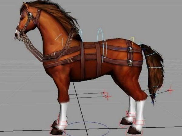 تلاعب الحصان البني